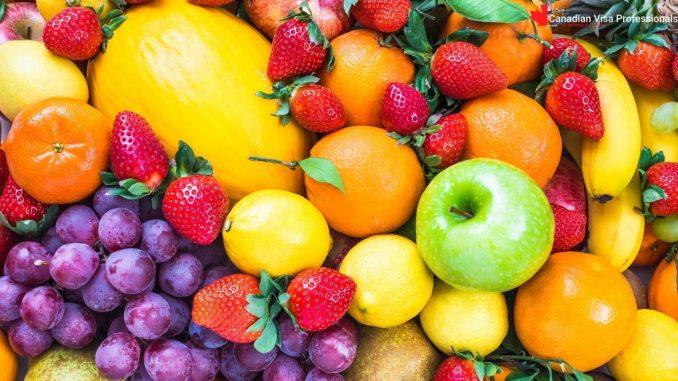 CanadianVisaProfessionals - Fruits In Canada